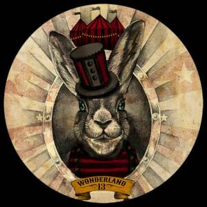 Wonderland 13 - Follow the Black Rabbit