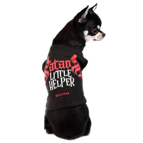 Killstar Hunde-Shirt Satan's Little Helper